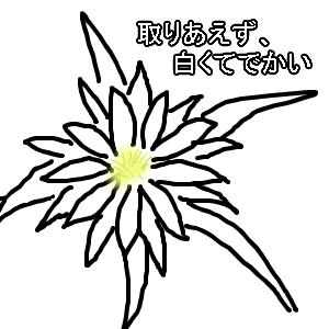 Cocolog_oekaki_2009_09_14_00_12
